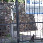colonia55